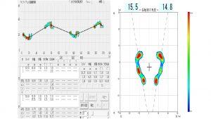 ウォークWAY MW-100のデータ例